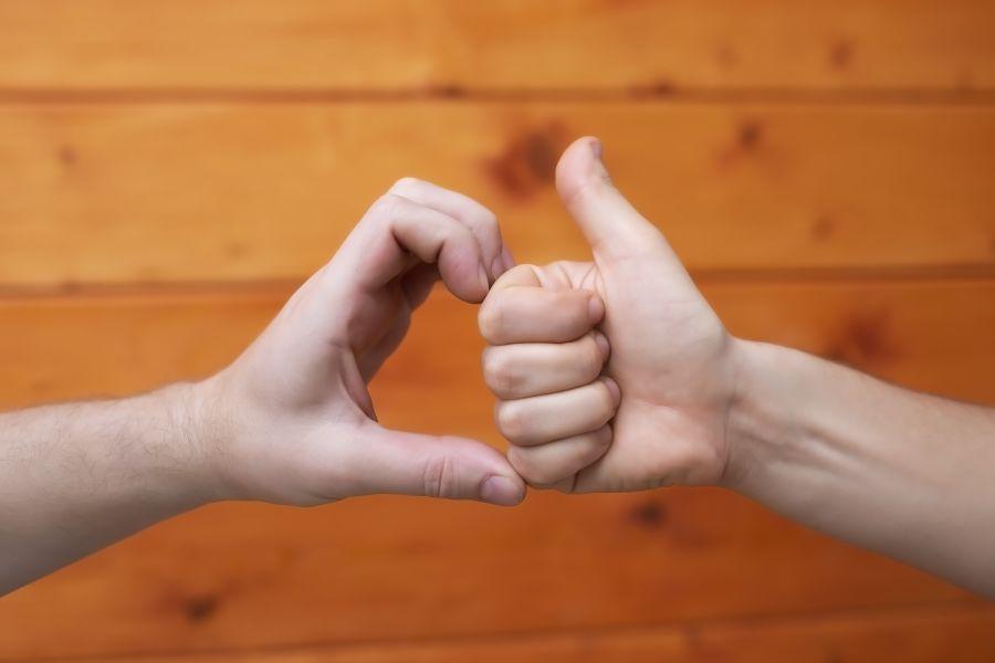Liebe und Freundschaft